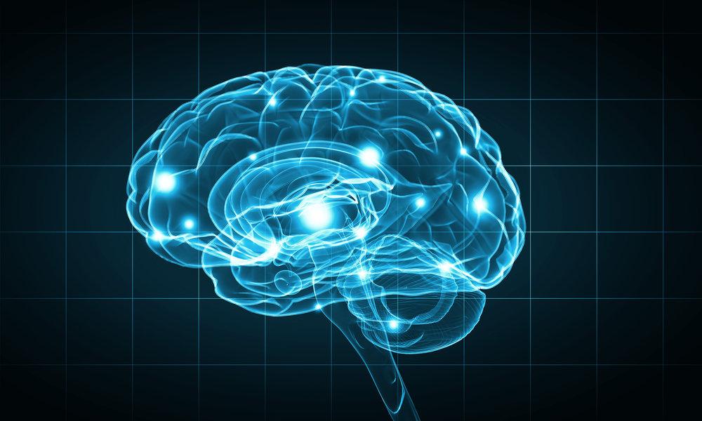 Стратегии обучения для мозга