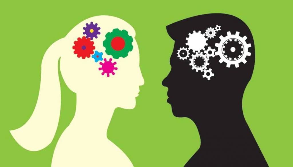Различия мужского и женского мозга